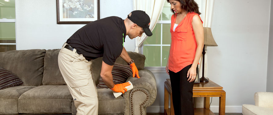 Studio City, CA carpet upholstery cleaning